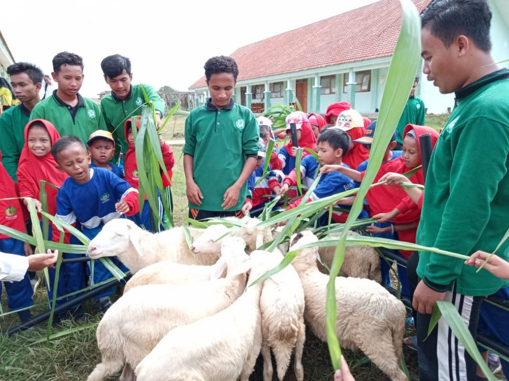 Cintai alam, siswa dan guru SD Almadany mengunjungi SMK Mulia Gresik, Selasa (11/2/20).