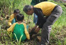 SD Muhammadiyah 4 Kota Malang adakan gerakan Tanam Seribu Pohon melibatkan 200 orang. (Endah/PWMU.CO)