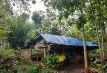 Kisah pilu Rajianto, sebatang kara tinggal di tengah kebun mendapat perhatian tim Lazismu Malang. Mereka melakukan survei ke lokasi pada Kamis (30/1/20).