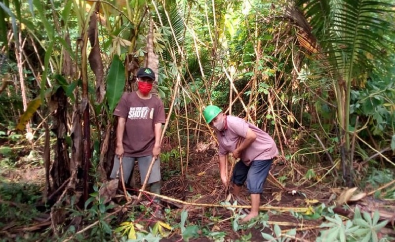 Panti Senduro Kabupaten Lumajang panen singkong ambyar dari hasil pertanian, Rabu (17/6/20).
