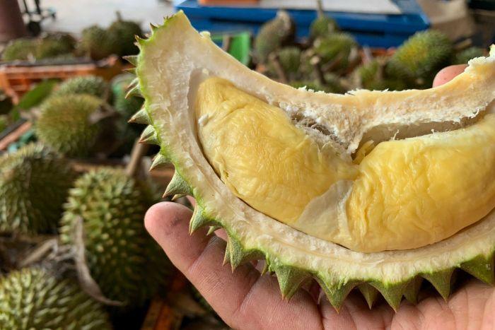 Durian Australia